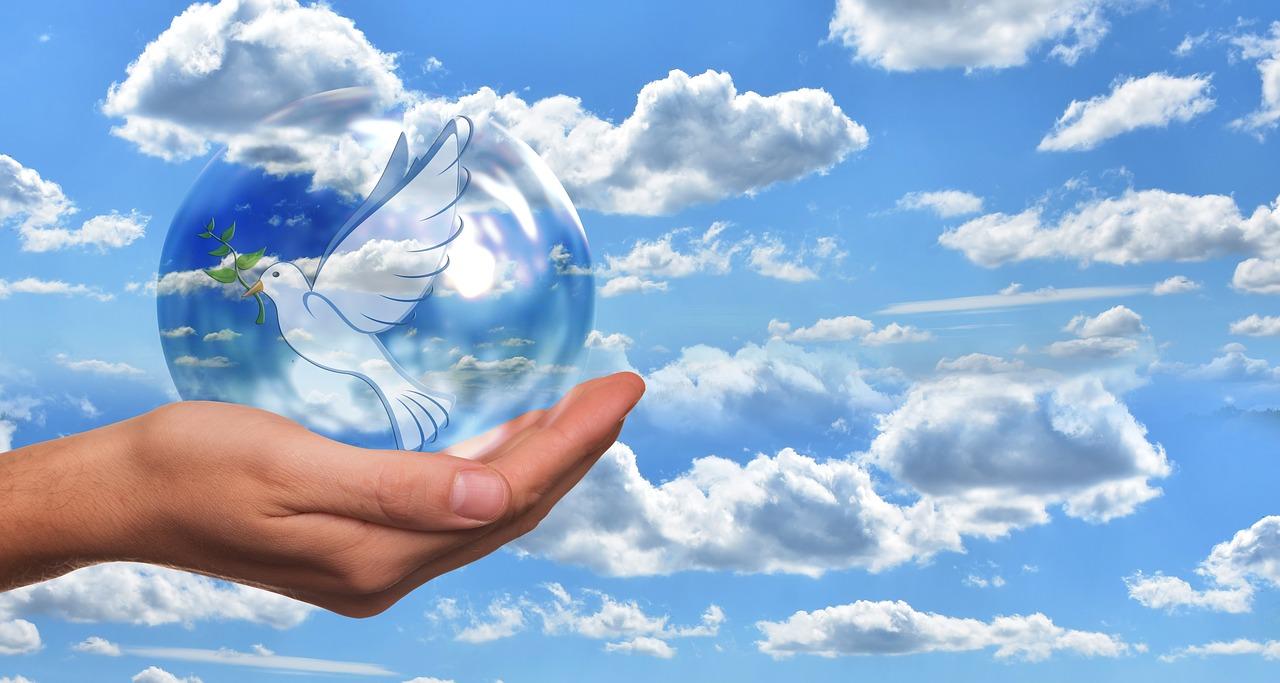 Mache die Welt zu einem Ort des Friedens - peace-dove-4077264_1280